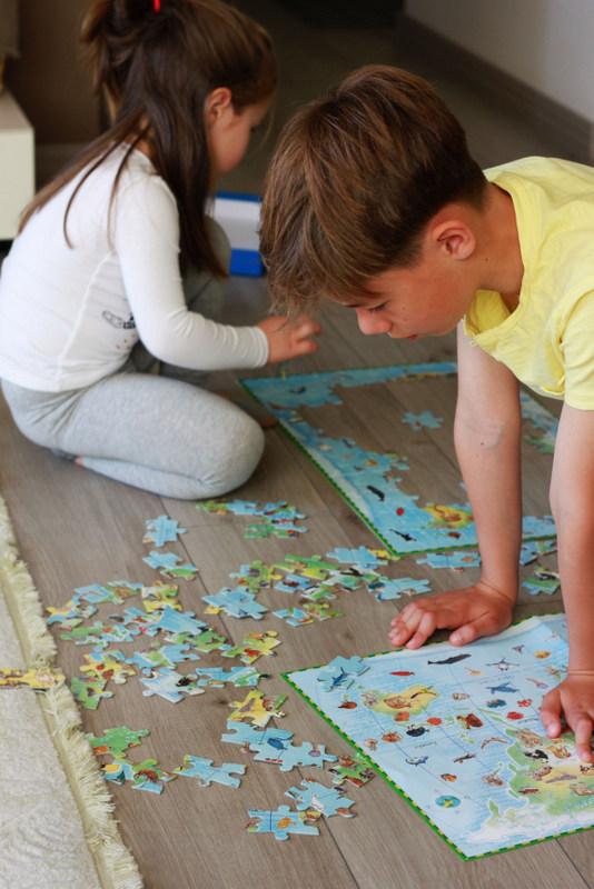 Incepeti cu animale frecvent intalnite sau pe care copilul le cunoaste si cresteti treptat gradul de dificultate.