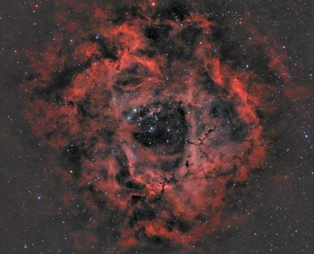 La nébuleuse de la Rosette est une vaste région HII située à quelque 4700 années-lumière du système solaire.