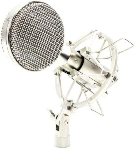 r2 ribbon 272x300 - Home Studio Vocal Microphone Guide