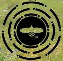 Planetary Dance Logo