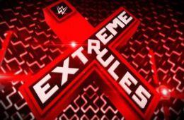 ¡Posible Spoiler! Se filtran varios combates para Extreme Rules