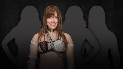 WWE noticias titulo NXT
