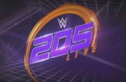 WWE elimina a un luchador del roster de 205 Live