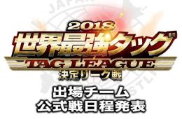 AJPW Real World Tag League