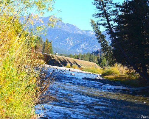 Rocky Mountain views from the Gallatin River