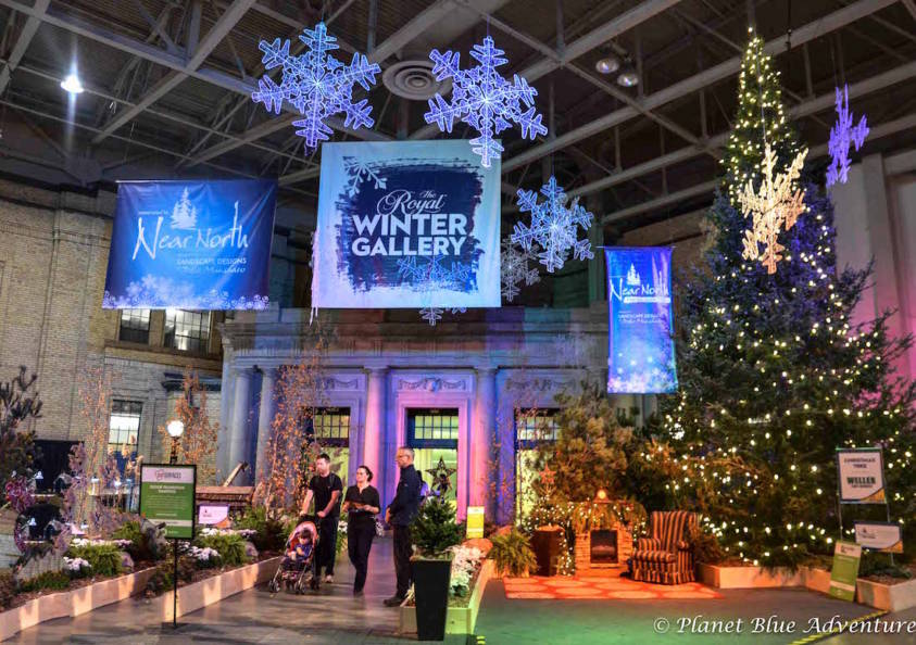 Top 5 Things to do at The Royal Agricultural Winter Fair