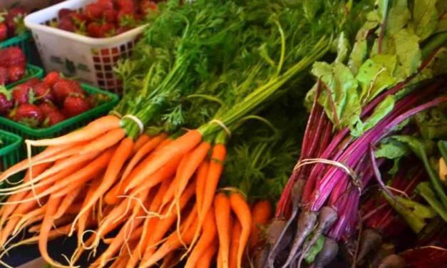 Vivianne Chartrand: Temiskaming Shores Culinary Ambassador