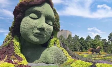 Celebrate Nature at Mosaiculture 2018 Gatineau