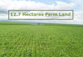 For Quick Sale: 12.7 Hectares Farm Land with C of O , Kuje