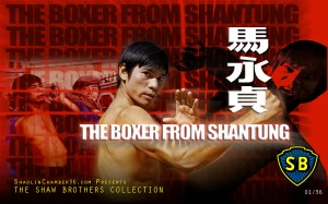 01-BoxerFromShantung_SC36_Wallpaper