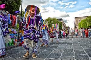 mexico dharma trip 2019