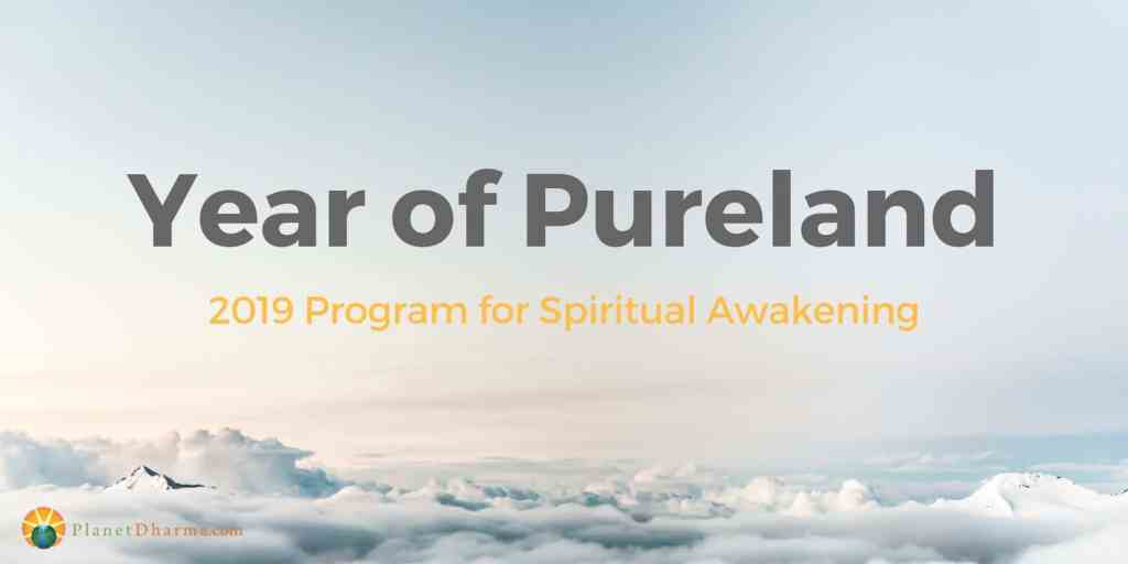 year of pureland 2019
