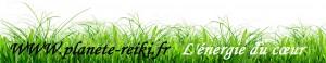herbe-énergie-du-cœur