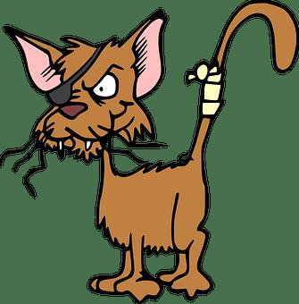 Intoxication du chien et du chat