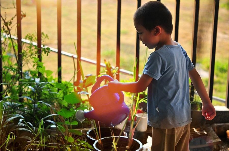 Un enfant qui découvre le joies de s'occuper d'un petit potager et de prendre soin de plantes