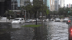 Flooded Miami Beach