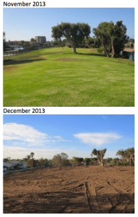 Example of xeriscaping. The four-acre lawn outside SoCal Gas' Playa Del Rey facility was removed and replaced with drought-tolerant vegetation. (Image: SoCal Gas)