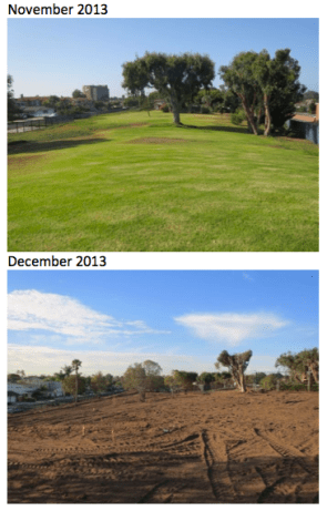 The four-acre lawn outside SoCal Gas' Playa Del Rey facility. In 2014, the lawn was removed and replaced with drought-tolerant vegetation. (Image: SoCal Gas)