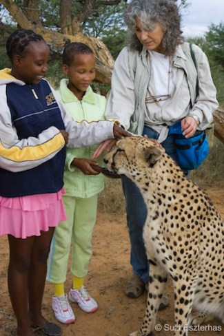 Dr. Laurie Marker and Namibian school children meeting Chewbacca, an adult male cheetah that was orphaned as a small cub and raised by Dr. Marker. (Photo: © Suzi Eszterhas)