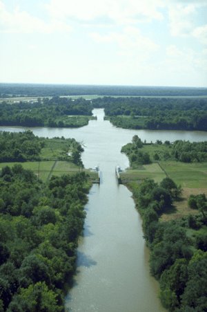 Bayou Teche where it intersects a Wax Lake outlet, Southern Louisiana (Source: Creative Commons)