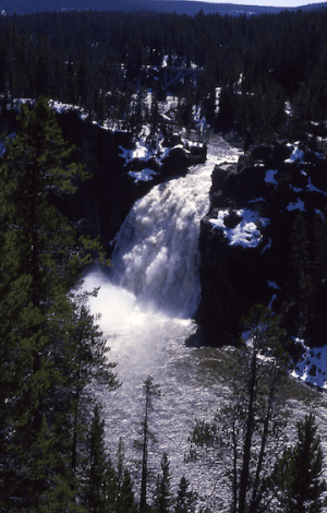 Upper falls of the Yellowstone River (Source: WikiMedia Commons)