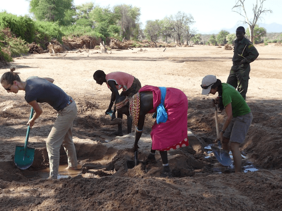 The ladies team dig a water hole in the dry Ewaso Nyiro River. (Image Credit: Ewaso Lions)