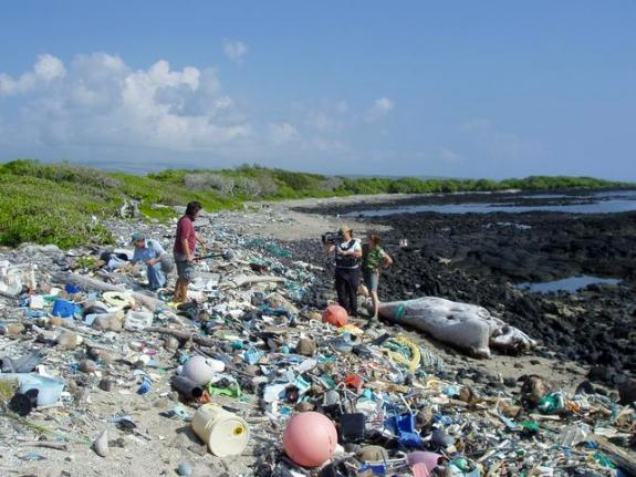Marine debris on Kamilo Beach, Hawaii, washed up from the Great Pacific Garbage Patch. (Image Credit: Algalita)