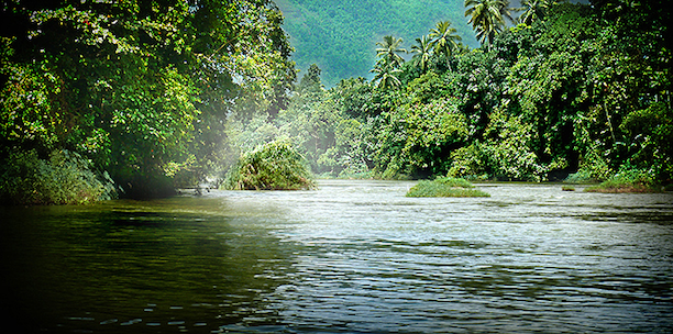 The Kelani River near Kitulgala. (Photo Credit: Manchi / WikiMedia Commons)