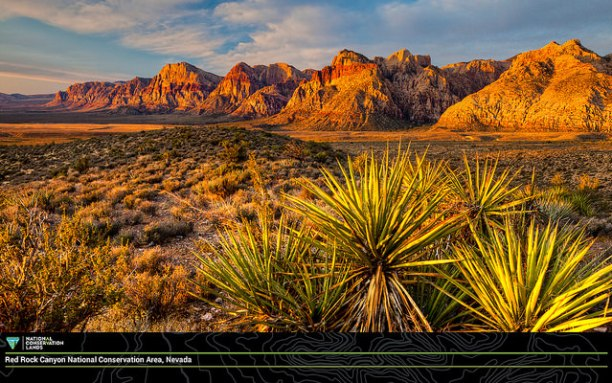 Nevada's first National Conservation Area, Red Rock Canyon. Part of the Bureau of Land Management's National Conservation Lands. (Photo Credit: Bureau of Land Management)