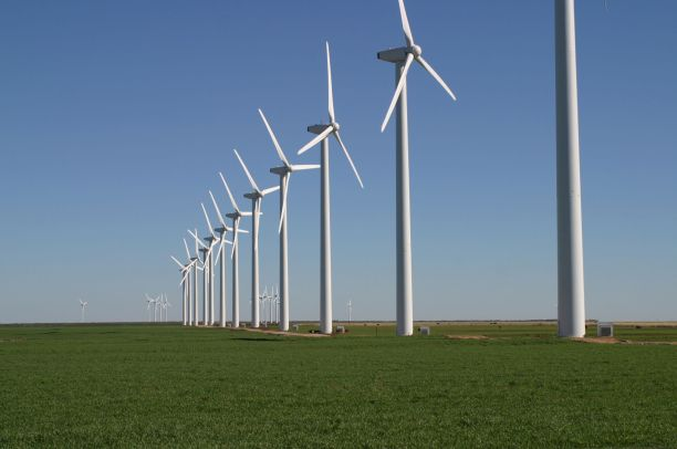 The Brazos Wind Farm, also known as the Green Mountain Energy Wind Farm, near Fluvanna, Texas. (Photo Credit: Leaflet / WikiMedia Commons)