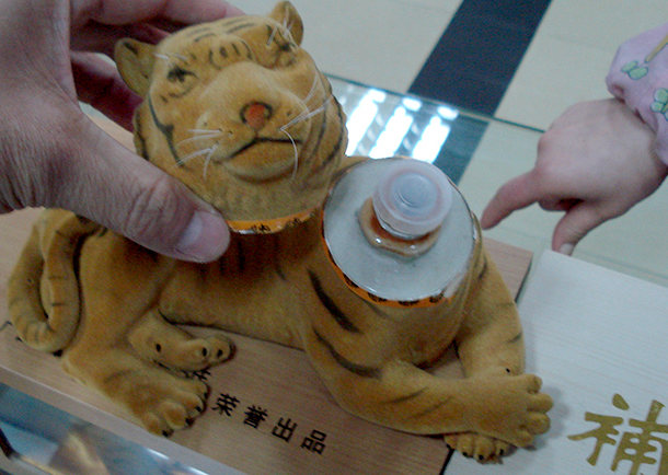 The government austerity campaign needs to ban official gifting and receiving gifts made from wildlife, such as tiger bone wine, ivory and rhino horn carvings. (Photo courtesy of IFAW)