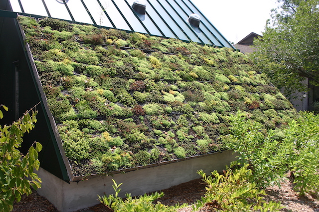 Green Roof at the Virginia Living Museum in Newport News, Virginia. (Photo Credit: Ryan Somma / Flickr)