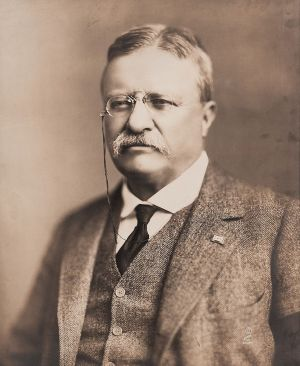 President Theodore Roosevelt in 1918. (Photo Credit: Baker Art Gallery)
