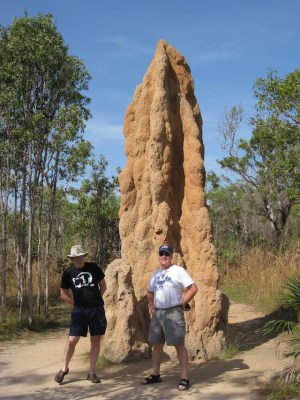 Cathedral termite mound, Litchfield National Park, Northern Territory, Australia. (Photo Credit: J Brew / Flickr)
