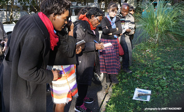 Participants in the Primate Research and Conservation Training Seminar took part in data-collection simulations, where they practiced entering observations they might make in the field into the CyberTracker app on a GPS-enabled smartphone. (Photo: African Wildlife Foundation)