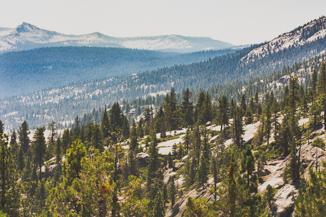 Sierra National Forest in California's Sierra Nevada mountains. (Photo: Brian Klonoski)