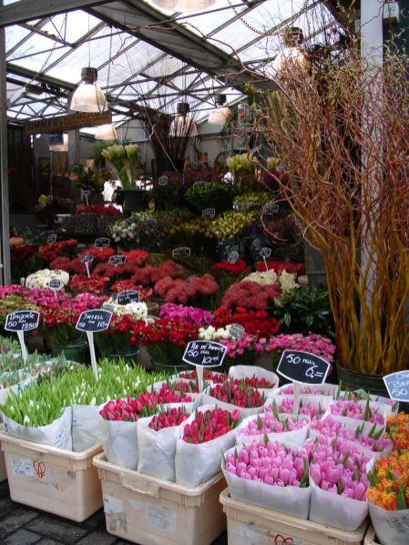12mercato-dei-fiori-ad-amsterdam