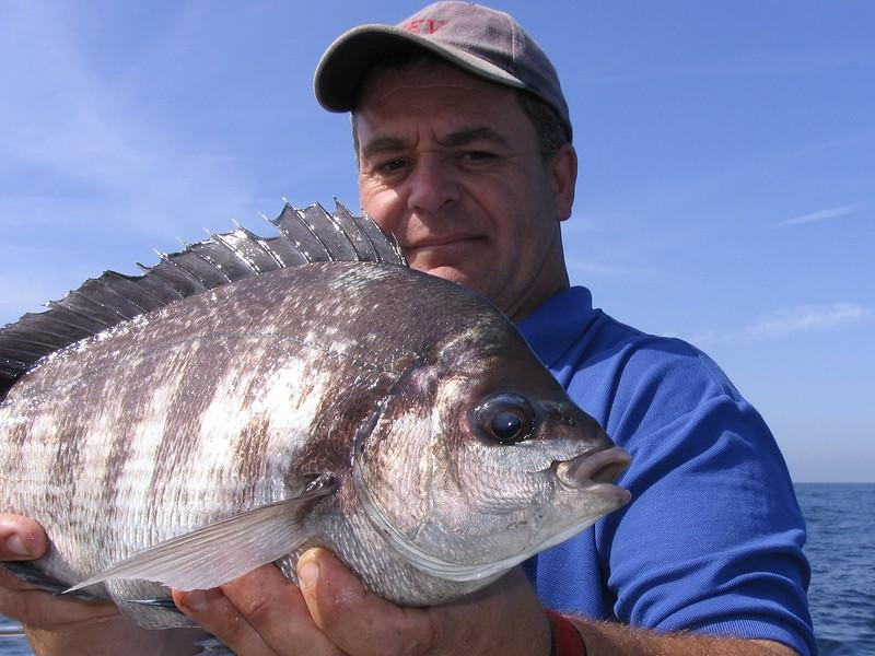 an angler holds a black bream