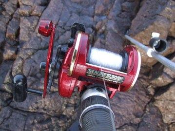 a red Diawa SL30SH multipler reel on rod