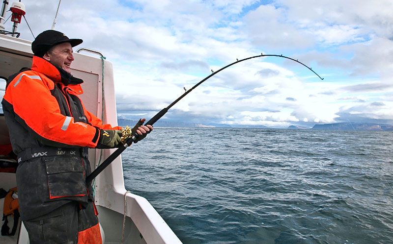a rod bent with a fish in Iceland
