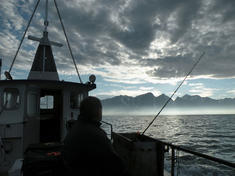 a brooding fjord backdrop to a charter boat trip in Norway