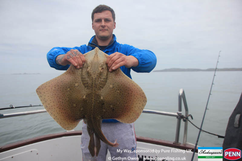 a blonde ray from Holyhead