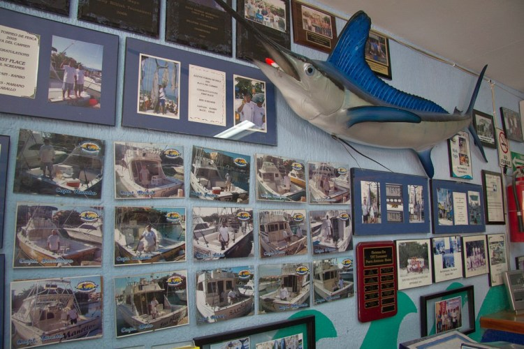 Inside the Captain Ricks office showing some of the fleet