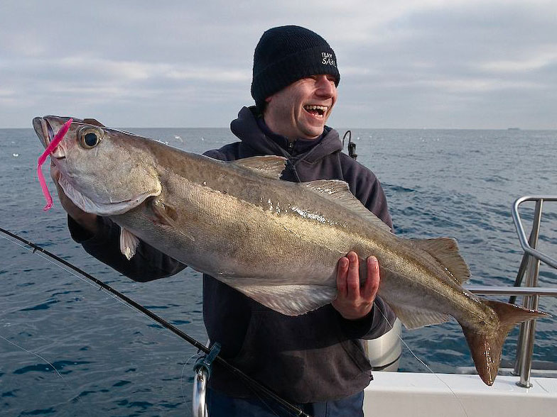 happy angler with a pollack on a Red Gill EVO sandeel