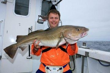 shetland boat fishing cod