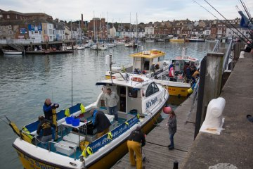 Weymouth International Boat Angling Challenge in harbour
