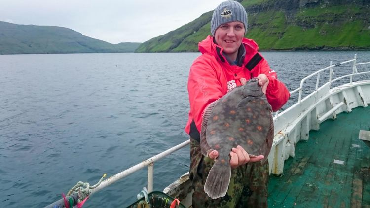 Ally with a well marked boat caught plaice