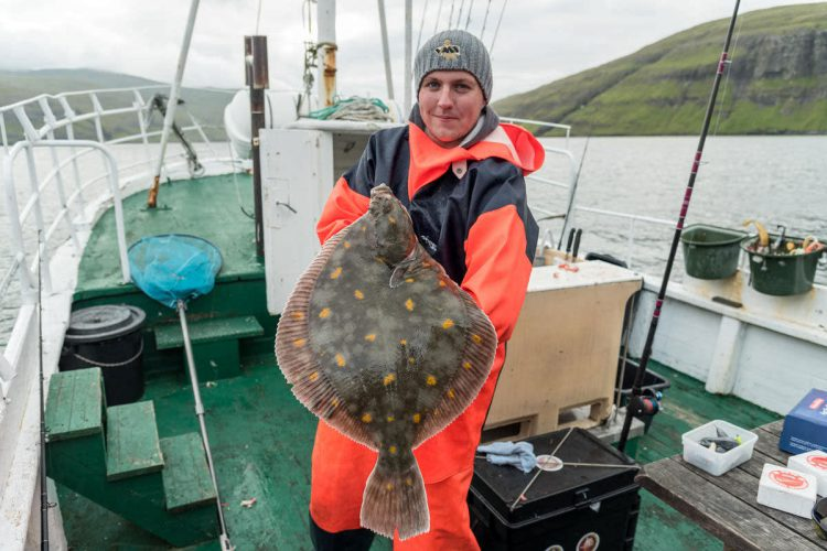 Ally with an orange spotted plaice
