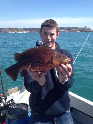boat fishing Jersey ballan wrasse