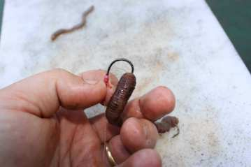 Step 10 - The Bloodworm Trap pennel rig